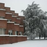 Bulding and tree under the snow
